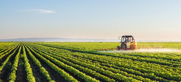 So God Made a Farmer …