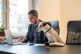 Time to Buy Your F&I Professional a Dog?