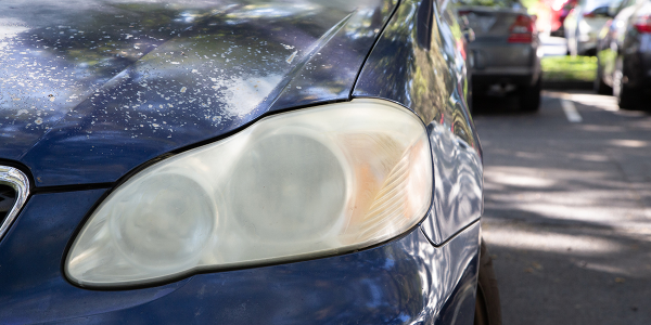 New experiments conducted by AAA found restoring and replacing deteriorated headlights can...