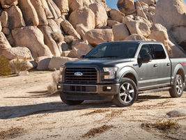 "2015–'19 Ford F-Series: ""Equipped with an excellent range of engines, strong towing and hauling..."