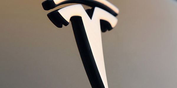 Tesla vs. Franchise: Weighing the Pros and Cons