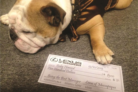 """Aside from faux champagne and cupcakes, Lexus of Massapequa also held a pet contest via social media. """"Baby Howard"""" was the winner and appeared in various promotions for the dealer during the month of November."""
