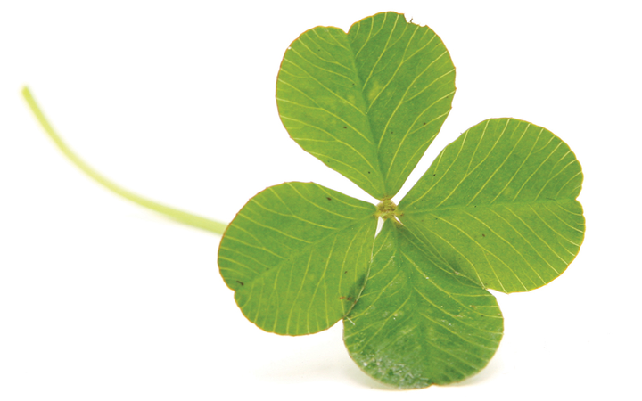 The author advises F&I managers on a losing streak to create their own luck.   - Photo by RyanJLane via Getty Images