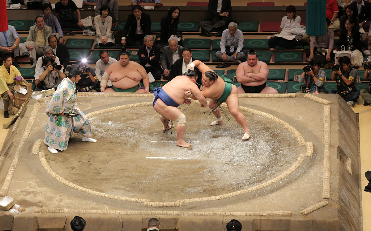 F&I Should Be Grand Sumo Yokozunas