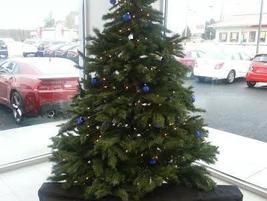 Central Maine Motors is feeling festive.